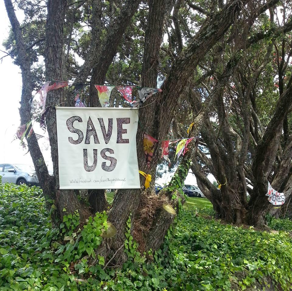 Save Pohutukawa trees
