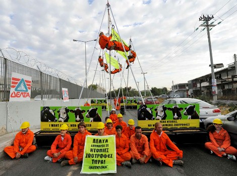 Activists and Greenpeace staff outside of the dairy company's headquarters.