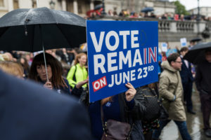 Vote Remain sign