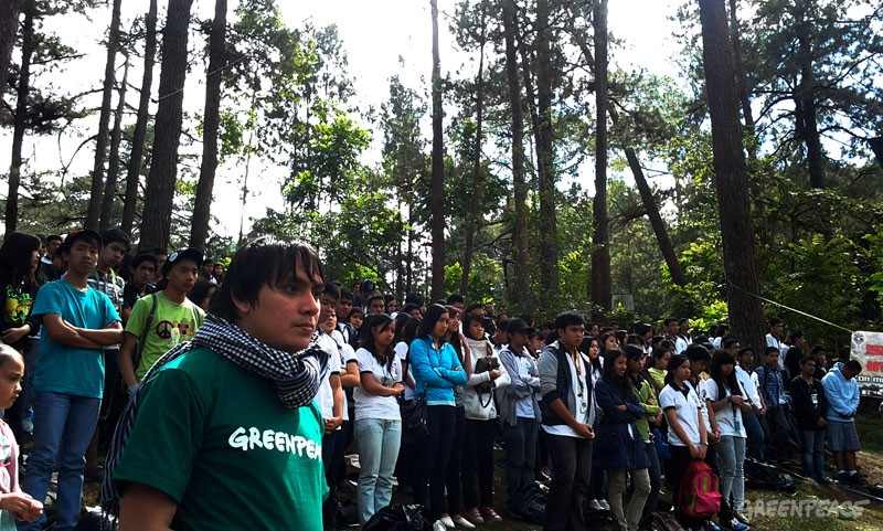 Baguio protestors and Greenpeace in the trees
