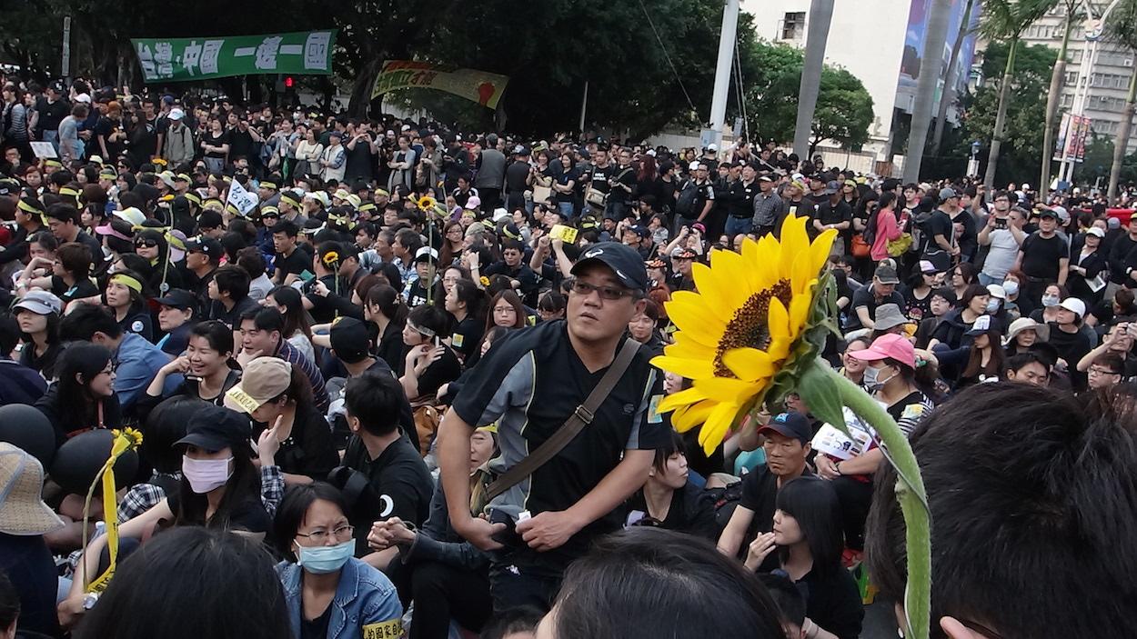Sunflower Movement and Digital Democracy